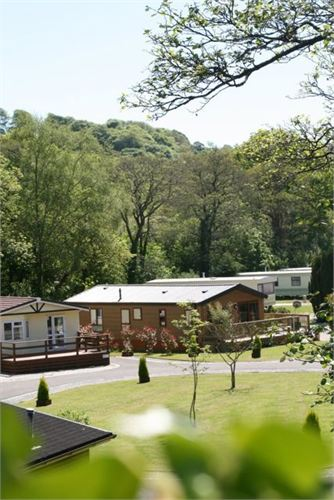 Luxury holiday lodges set in landscaped ground and woodlands
