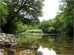 A tranquil setting by the River Lynher